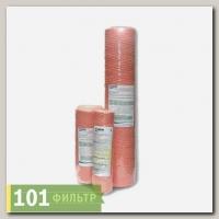 Картридж Fe+2 10SL Аквапост (очистка воды от растворенного железа, марганца и тяжелых металлов)